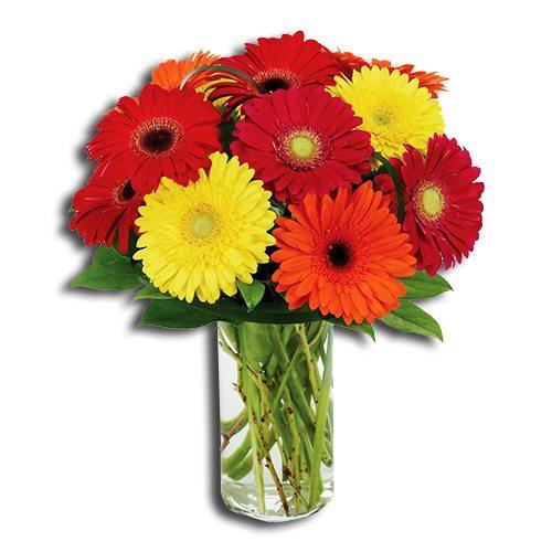 4-dozen-gerberas-Bouquet
