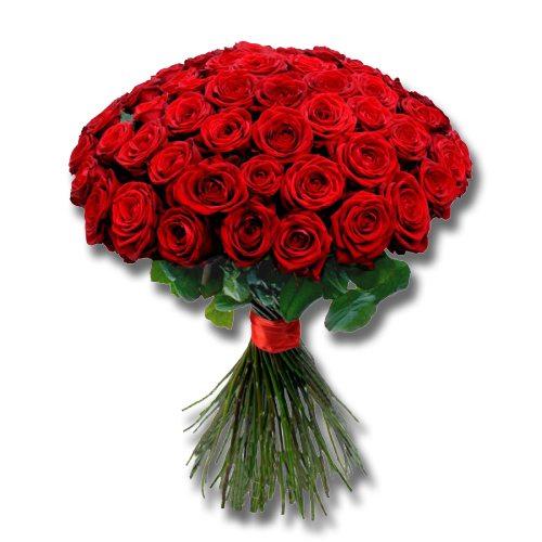 half century red roses