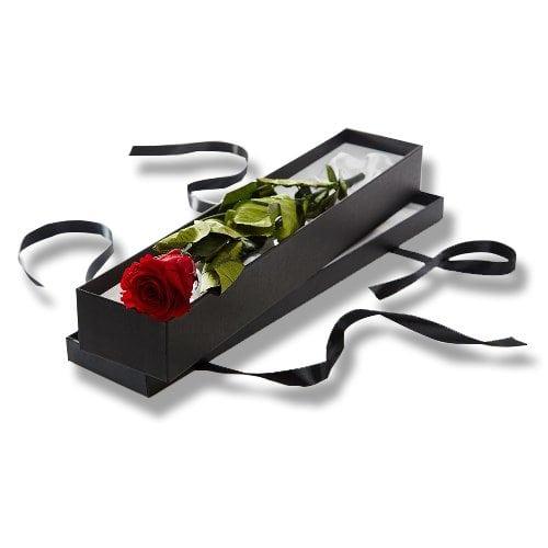 luxury single rose